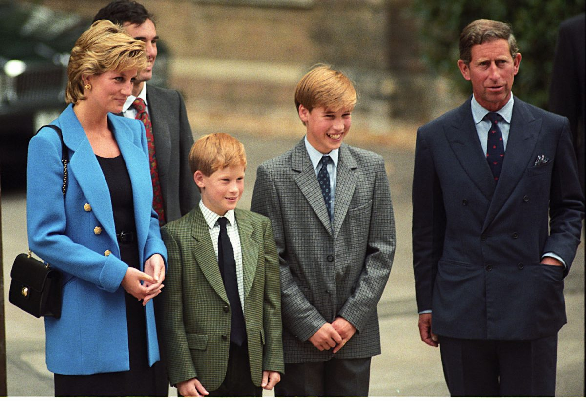 Prince Harry and Prince William Took Very Different Lessons from Their Parents' Failed Marriage, Expert Claims